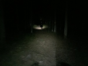 I mörkret.