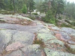 """Mer """"stig"""" i Skuleskogen."""